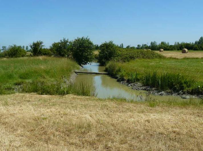 Recherche Porteur(s) de projet en Vendée !
