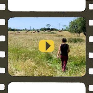 Lucie Maritaud, paysanne de nature, vidéo de présentation