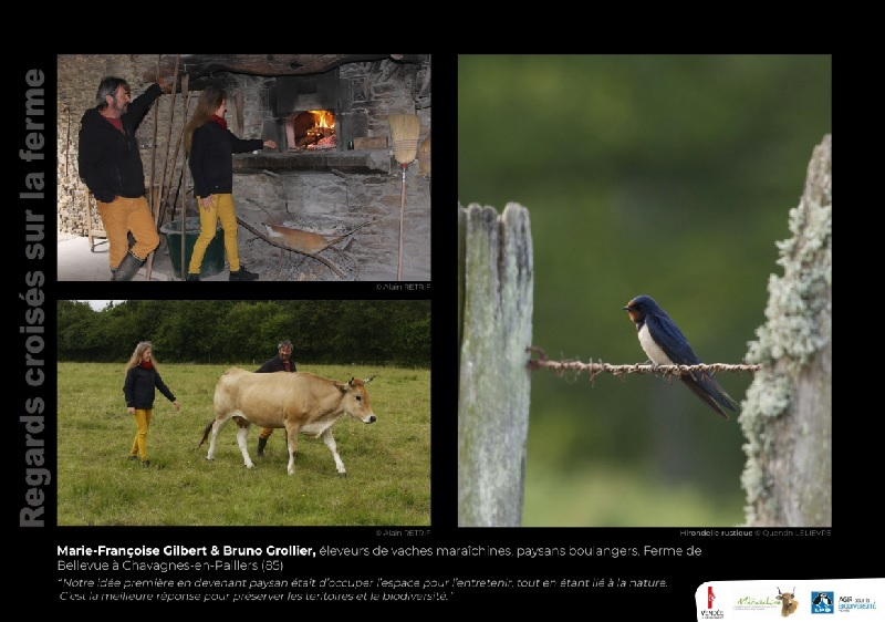 """Visuel du panneau d'expo """"regards croisés sur la ferme"""" de la ferme de Bellevue"""