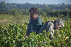 Panneau d'expo Regards croisés sur la ferme - Agnès et Jacques Carroget - Photo © Lise Pennec