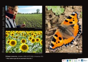 Panneau de l'expo Regards croisés sur la ferme - Philippe Lemercier © LPO Pays de la Loire