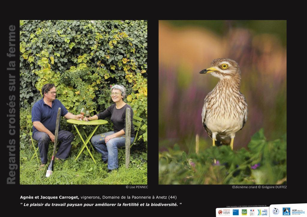 """Panneau de l'expo """"Regard croisés sur la ferme"""" Domaine de la Paonnerie (Anetz - 44) © LPO Pays de la Loire"""