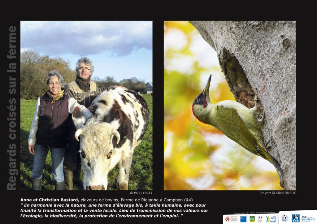 """Panneau de l'expo """"Regard croisés sur la ferme"""" Ferme de Riglanne (Campbon -44) © LPO Pays de la Loire"""