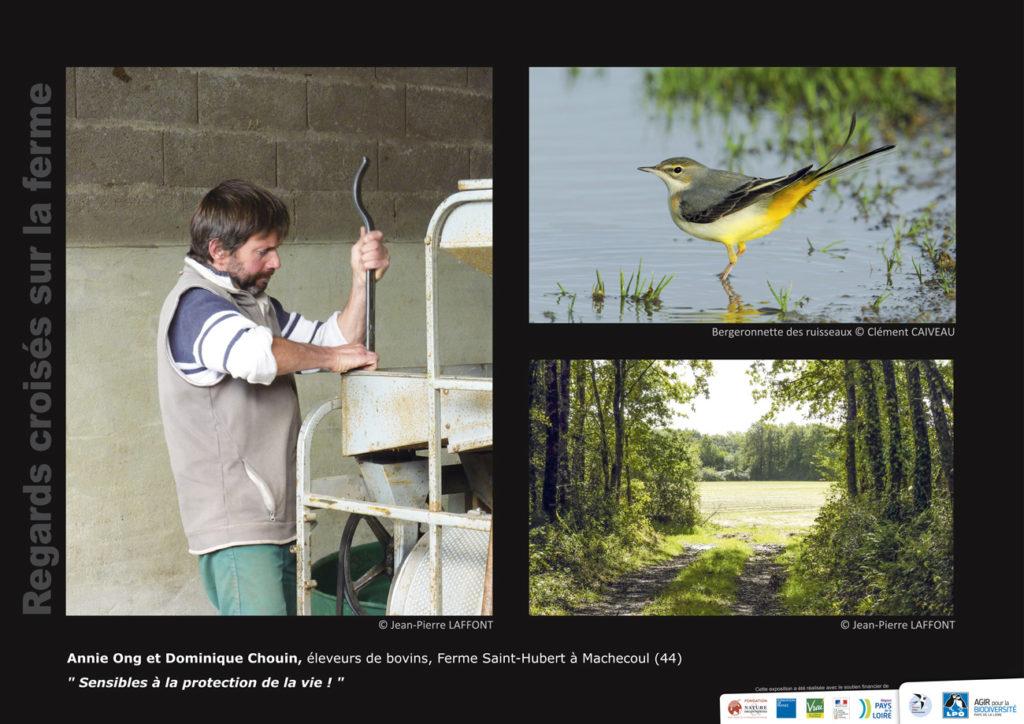 """Panneau de l'expo """"Regard croisés sur la ferme"""" Ferme Saint Hubert (Machecoul - 44) © LPO Pays de la Loire"""