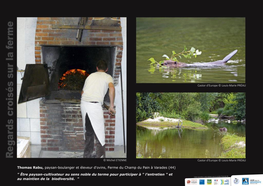 """Panneau de l'expo """"Regard croisés sur la ferme"""" Ferme du Champ du pain (Varades - 44) © LPO Pays de la Loire"""