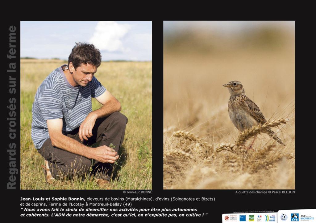 """Panneau de l'expo """"Regard croisés sur la ferme"""" Ferme de l'Ecotay (Montreuil-Bellay - 49) © LPO Pays de la Loire"""