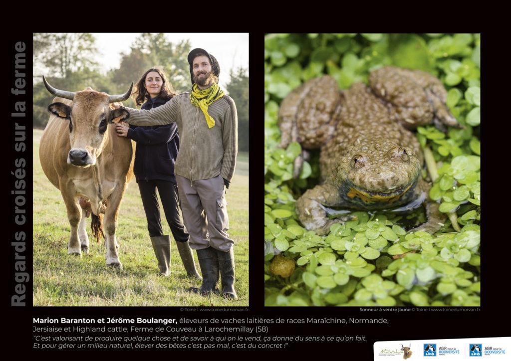"""Panneau de l'expo """"Regard croisés sur la ferme"""" Ferme de Couveau (58) © LPO Nièvre"""