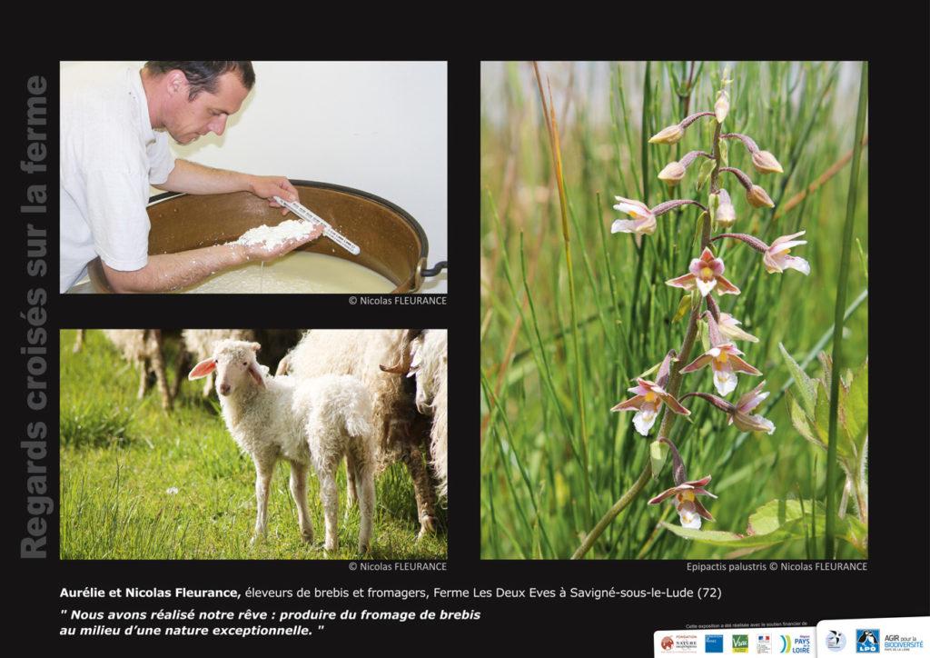"""Panneau de l'expo """"Regard croisés sur la ferme"""" Ferme Les Deux Eves (Savigné-sous-le-Lude - 72) © LPO Pays de la Loire"""