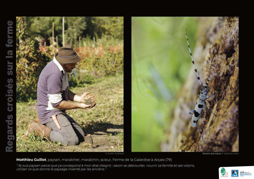 """Panneau de l'expo """"Regard croisés sur la ferme"""" Ferme de la Gaïardise (Arçais -79) © LPO Vendée"""