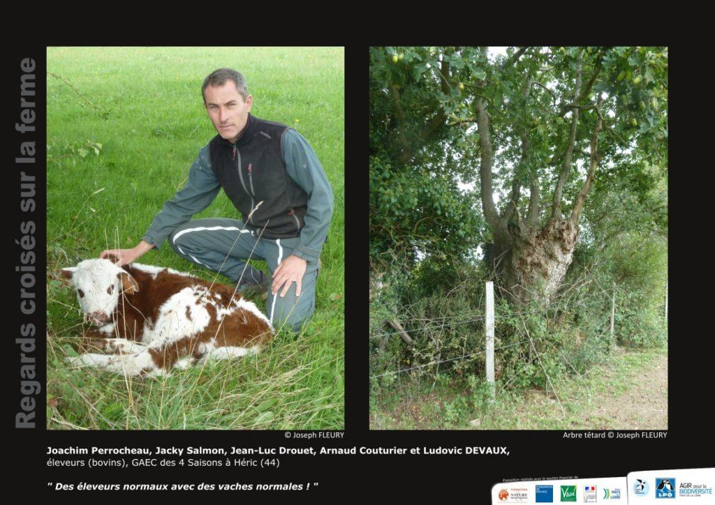 """Panneau de l'expo """"Regard croisés sur la ferme"""" du GAEC des 4 saisons - © LPO Pays de la Loire"""